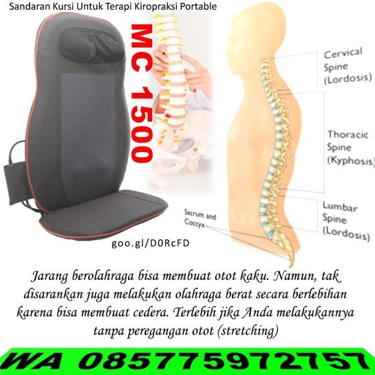 Hasil gambar untuk sakit punggung 081380783912